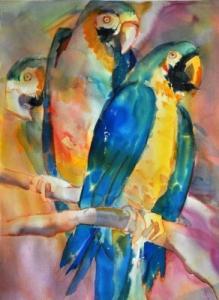 elaine harvey parrots