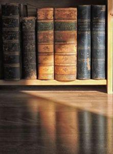 bjorn bookshelf
